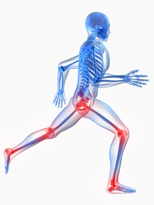 dreamstime_m_11994511 running skeleton with joints in red